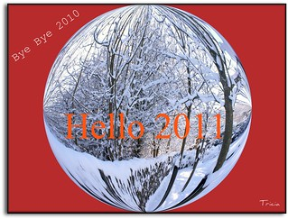 Saying goodbye to 2010 and boldly welcoming 2011. | by Patricia Speck