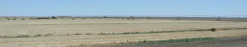 Unsustainable Rolling Irrigation systems in NSW drought area on the way to Hay | by spelio