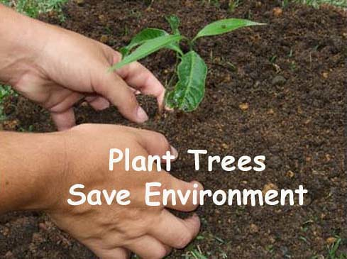 25 Everyday Techniques to Save Environment