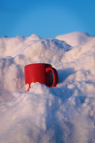 Mug in Snow | by cassiopeia81