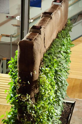 Gsky Living Green Walls: Living Wall, At The Museum (children's
