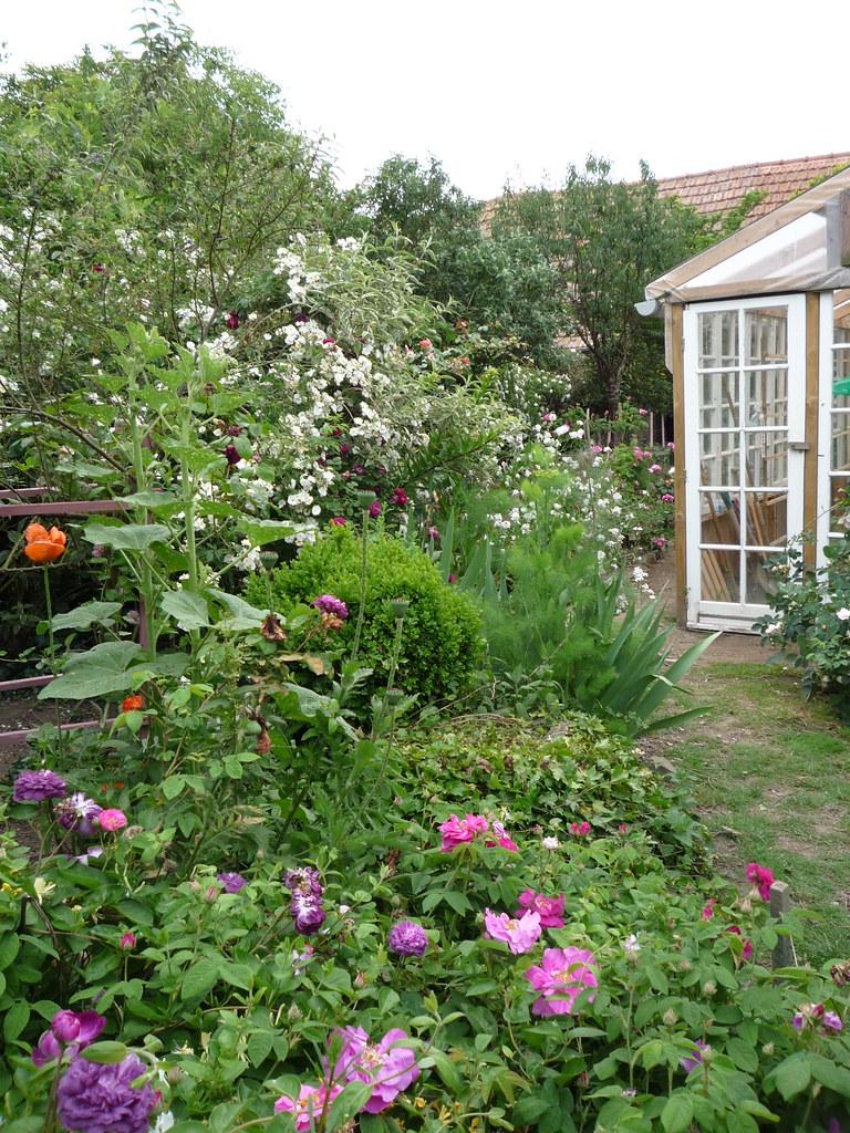Tryptych Organic Flower Garden In May Jardin Bio En Ma Flickr