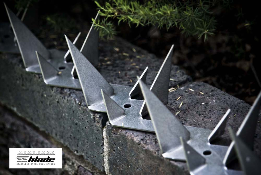 Ss Blade Wall Spike The Ss Blade Anti Climb Wall Spike Is Flickr