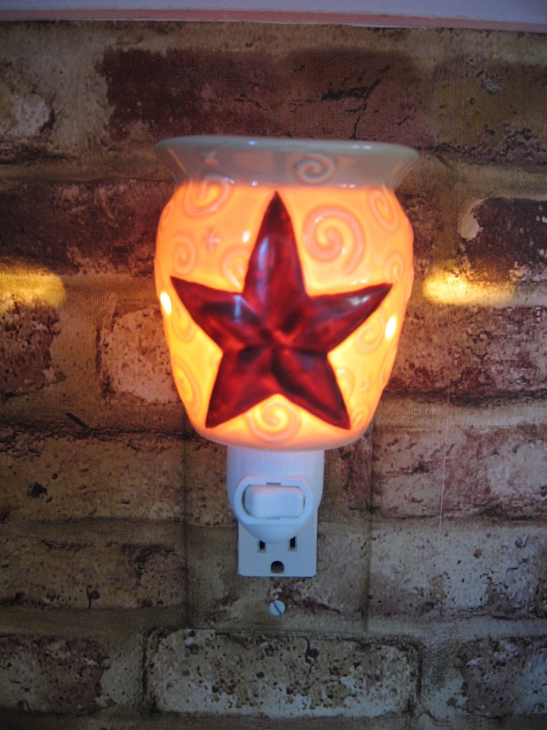 Rustic Star Plug In