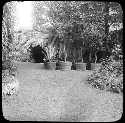 Jardin avec des arbustes en pot fonds trutat for Jardin avec arbustes