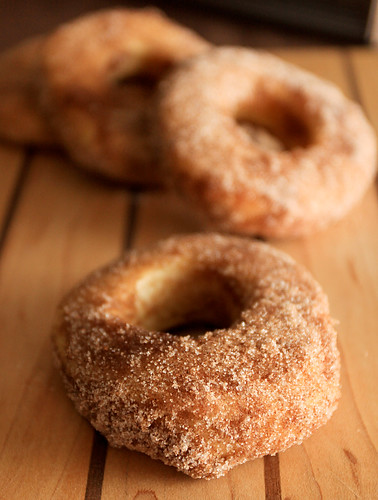 Baked cinnamon sugar doughnuts | by the boastful baker
