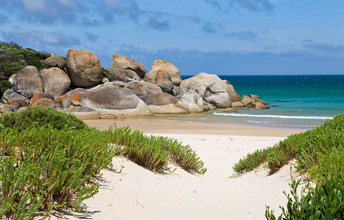 wilsons promontory online dating Rezdy online booking home  wilsons prom whale cruise from aud $12000  their southerly migration along the spectacular wilsons promontory coastline during .