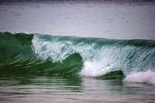 Wave | by Spurious Luke