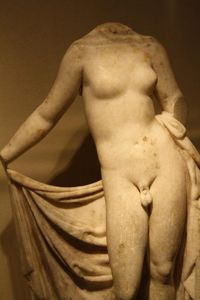 Image result for hermaphroditus