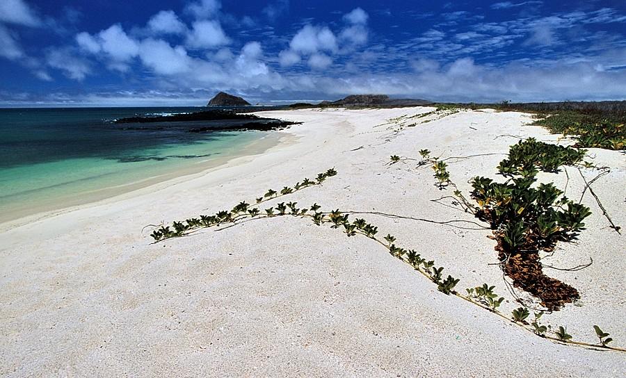 Galapagos, landscape