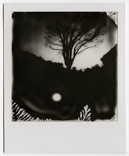 Sténopé Polaroid 600 | by Anthony Rochat