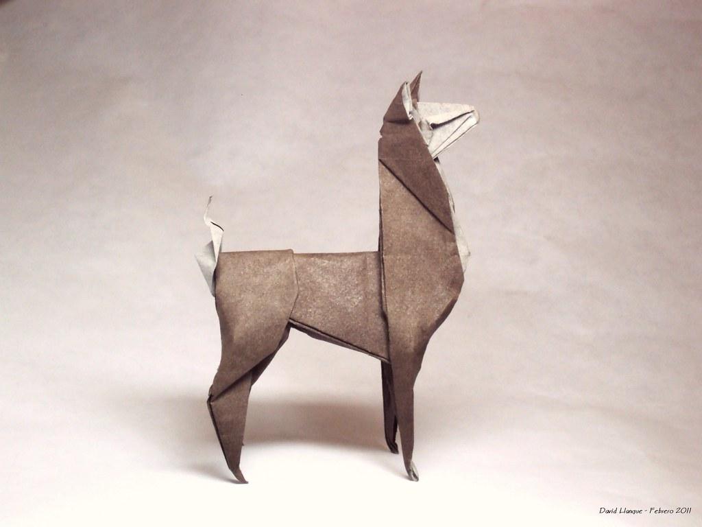 La Llama David Llanque Flickr
