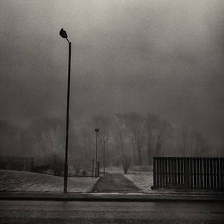Lamposts in fog, Raploch, Stirling. | by ...Matt Pringle...