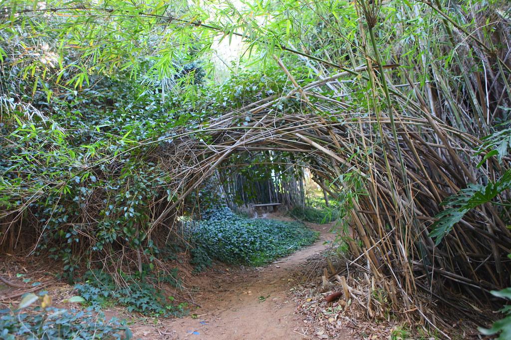 Genial Ucr Botanical Gardens | By Realjohnkim Ucr Botanical Gardens | By  Realjohnkim