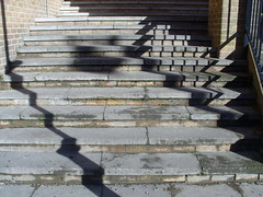 shadows, steps