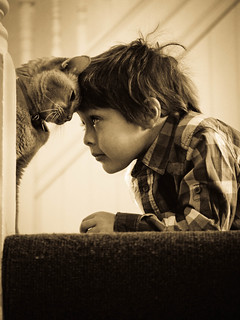 The boy and the cat part 2 | by Kirstin Mckee