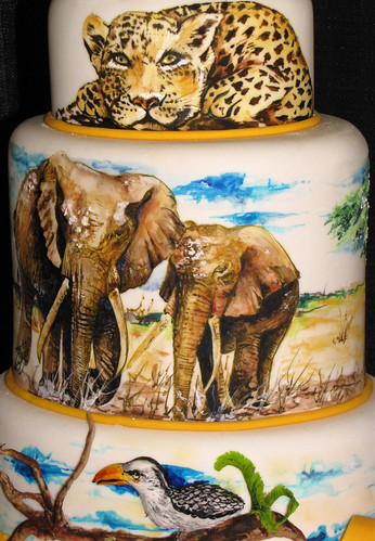 Safari Engagement Extravaganza - closeup (by Susie Araya) | by Dork-Chocolate