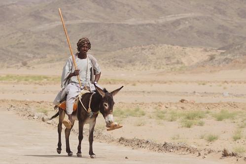 Image Result For Jesus On Donkey