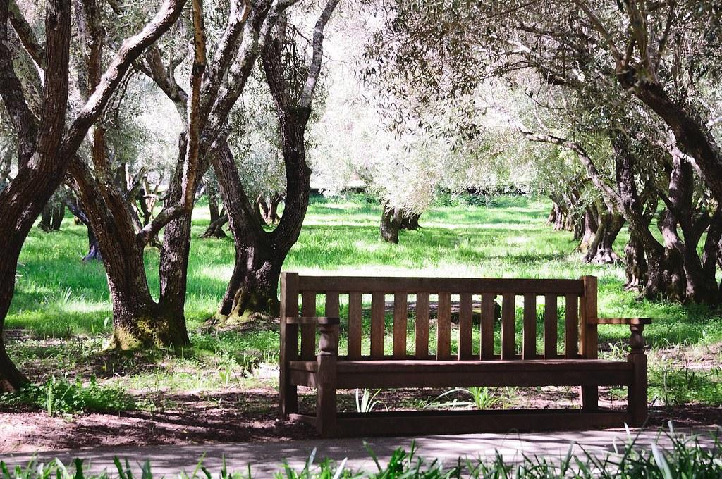 Filoli Garden Flickr