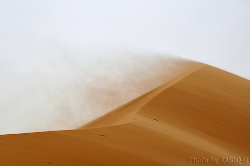 Blowing sand | by TARIQ-M