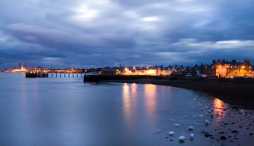 Swans Settling For the Night - Broughty Ferry Scotland | by Magdalen Green Photography