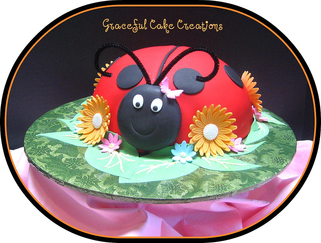 Lady Bug Birthday Cake Grace Tari Flickr