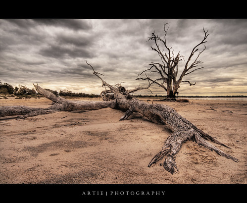 The Fallen :: HDR | by :: Artie | Photography :: Travel ~ Oct