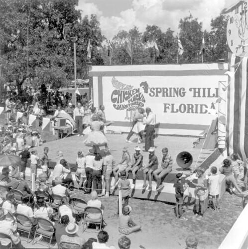 Spring Hill Florida Rental Car