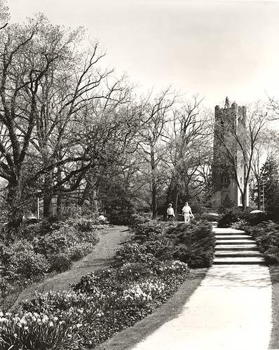 A View Of Beaumont Tower From The Botanical Garden Flickr