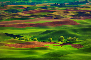 Almost Palouse Time Again | by kevin mcneal