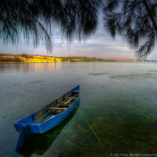 Blue Boat On Grassy Water | by Andre Luu