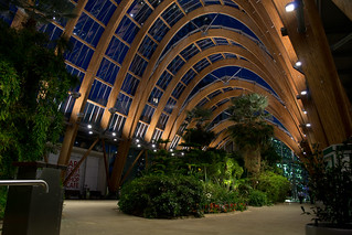 Winter Gardens at Night 2 | by markjohnrichards