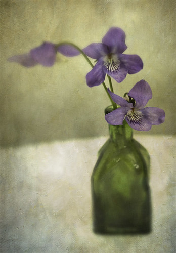 Untitled | by Cath Waters