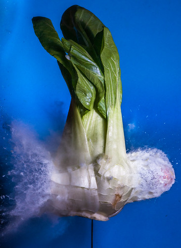 Boom Baby Bok Choy | by alan_sailer