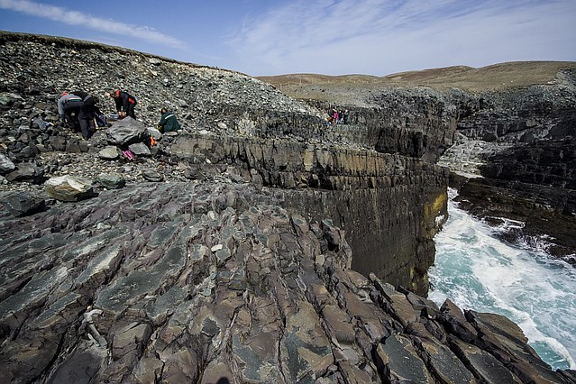 Cape Spear and Mistaken Point 12