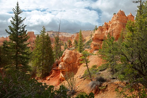 Bryce | by julesberry2001