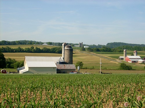 Farms in Buffalo Township | by Gerry Dincher
