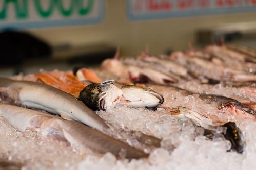 Mr Fish Seafood Myrtle Beach Sc