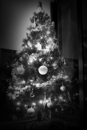 our christmas tree | by pvcpvc