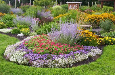 Ordinaire ... Shadbush Deer Resistant Garden | By Garden Boss
