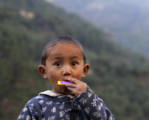 Nepali Boy with Harmonica | by cormend