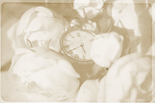 Time is running out. | by ninatakespictures