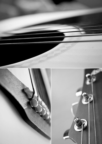 Guitar | by fickle trails