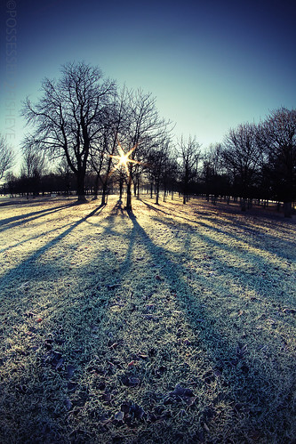 19/365 - frost and long shadows | by possessed2fisheye