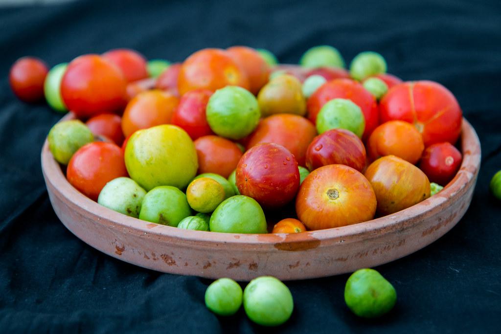 tomatbonanza