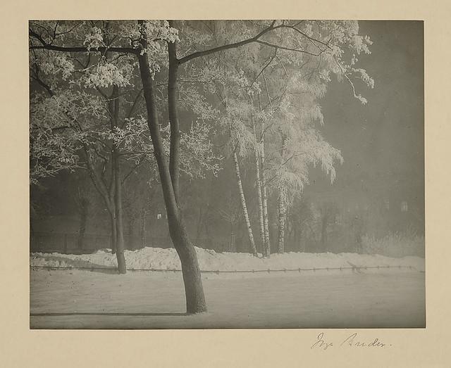 Breder, Inga (1855-1933)