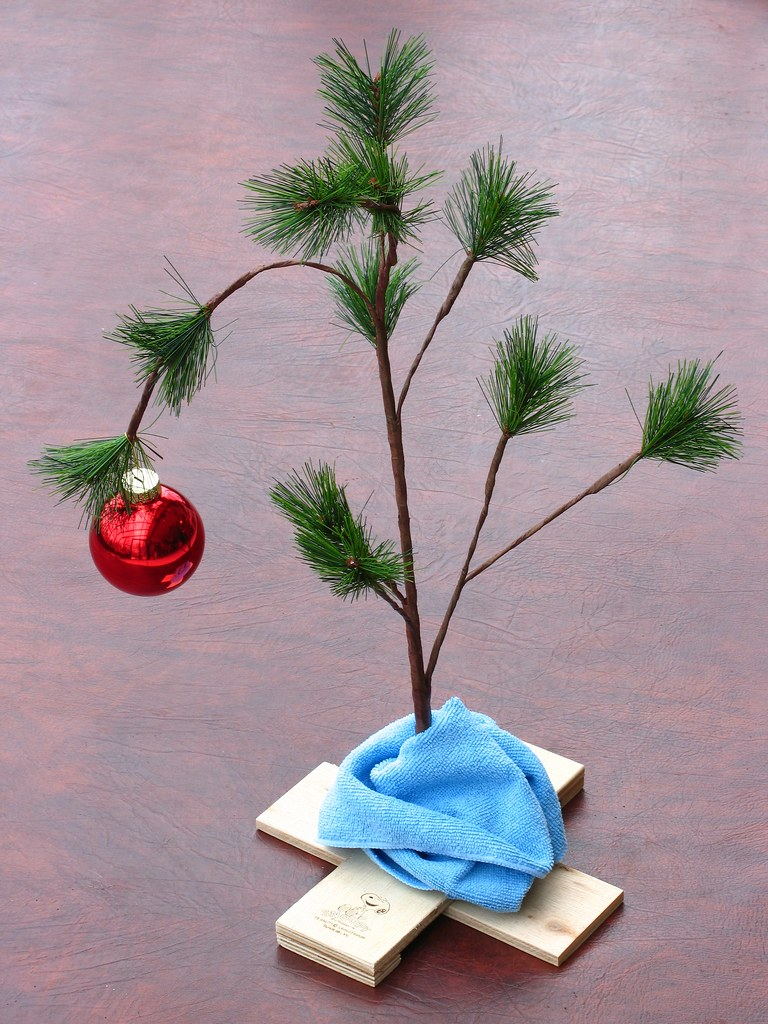A Charlie Brown Christmas Tree My All Time Favorite Tv Chr Flickr