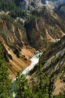 Yellowstone Canyon Between the Upper and Lower Falls at Yellowstone National Park | by D200-PAUL