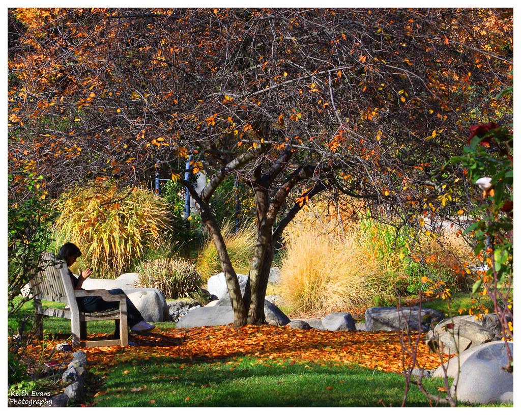 Descanso Gardens (33) | keith evans | Flickr