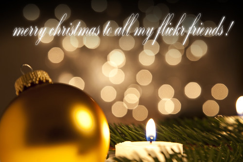 merry christmas !!! | by G.Hotz Photography (busy as a bee =)